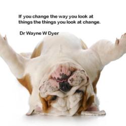 Se cambi il modo di guardare le cose ...